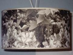 big_speciality_dachshund_shade.jpg