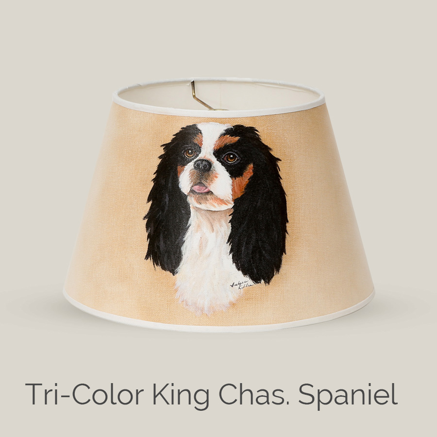 Tri-Color King Chas. Spaniel