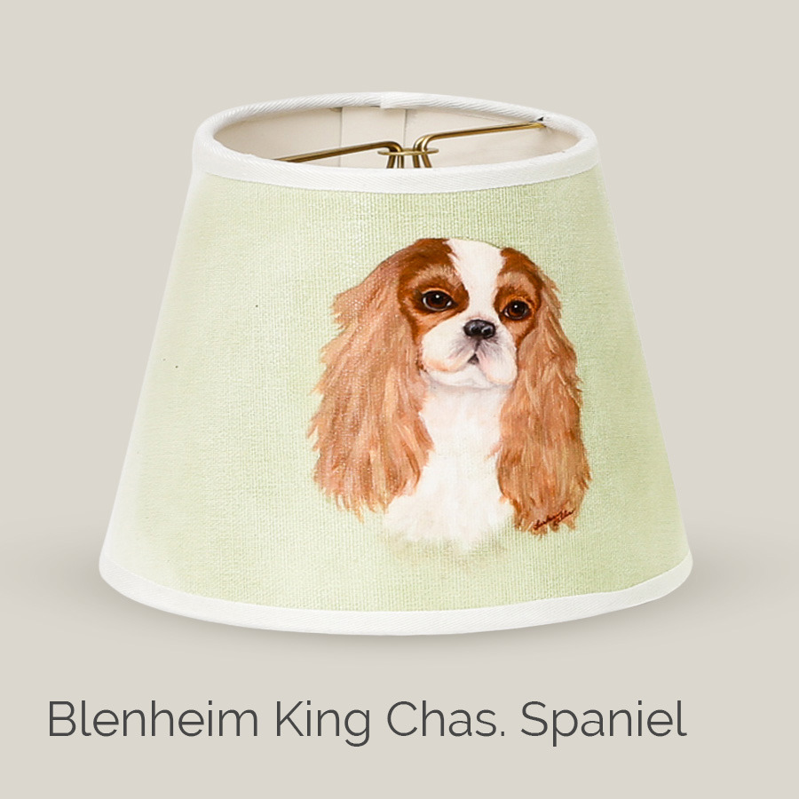 Blenheim King Chas. Spaniel